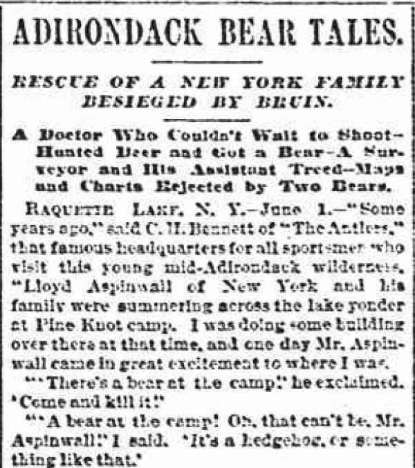 ADK bear tales 1